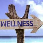 104 Ways To Feel Better: A New Wellness Program From Dr. Carolyn Dean